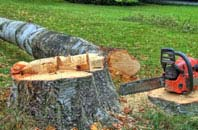 free Denver tree felling quotes
